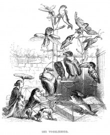 «Der Vogelheerd», illustration de Jean Ignace Isidore Gérard Grandville (1803-1847)