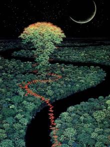 Une illustration de Isono Hirô