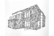 Haus-im-Grünen2014-encre-et-crayon-sur-papier-60x50cm