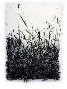 graminées-noires-02w