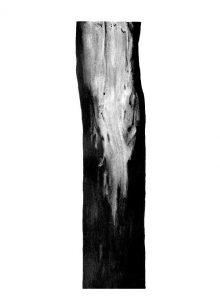 arbre-4-26xht36