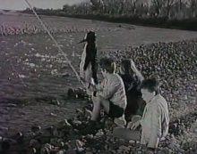 Zig et Puce sauvent Nénette, film de Georges Rollin de 1953